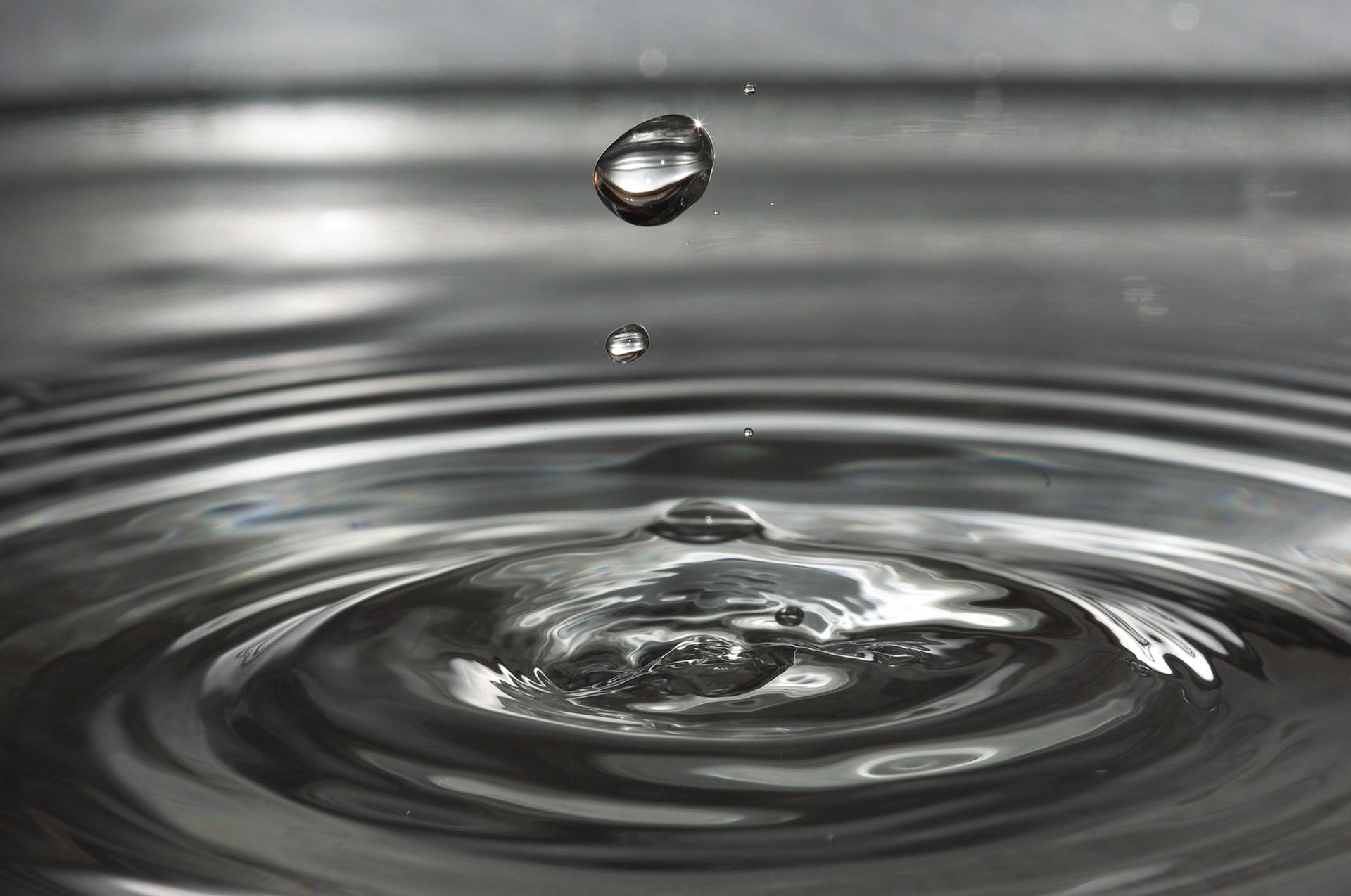 Hydroponic Drip Irrigation System - Indoor Gardening