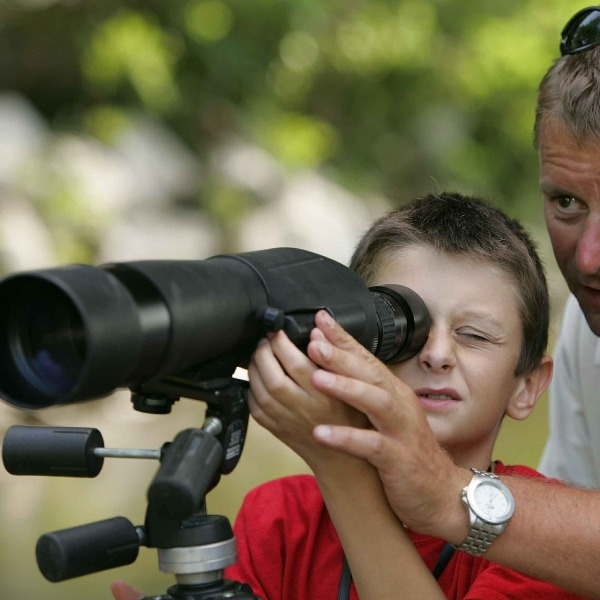 The Best Spotting Scopes For Birding